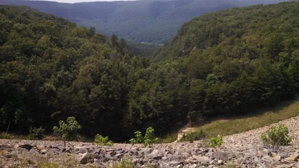 Wild Trails Race Series - Scenic City Marathon & 1/2 Marathon - Chattanooga, TN