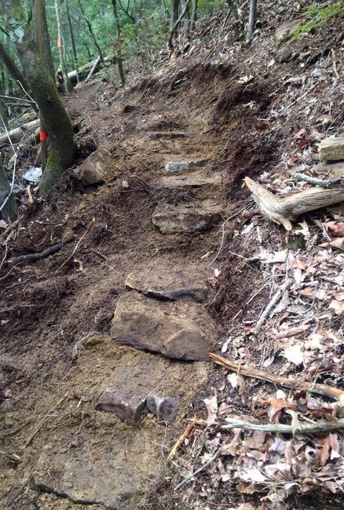 Cumberland Trail work - Wild Trails Conservation - Chattanooga trail maintenance