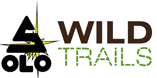 Wilderness First Aid Class in Chattanooga, TN | October 29th & 30th, 2016 | Wild Trails
